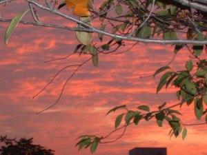 pink sunrise 3 sky
