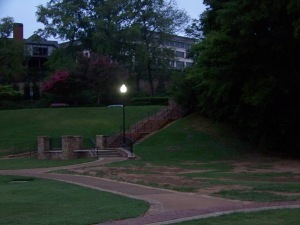 park green at dawn garden