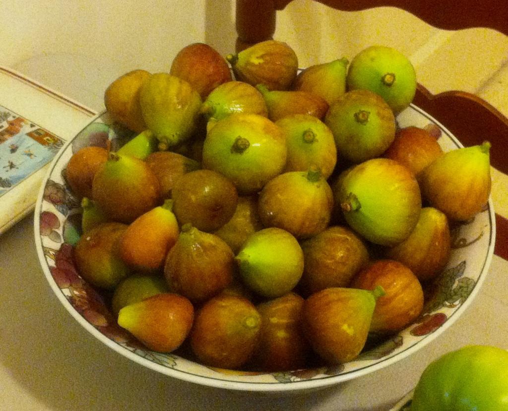 figs in bowl garden