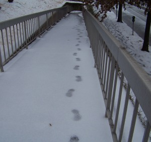 footprints snow po box