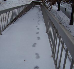 footprints snow po box